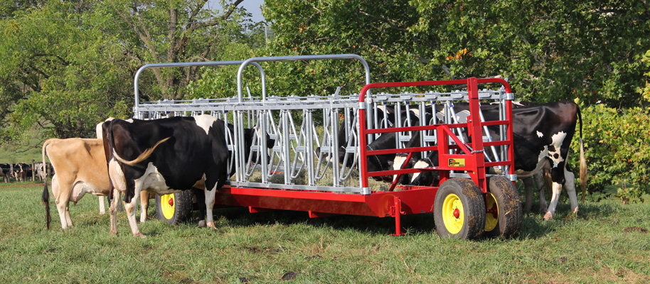 show cattle feeder